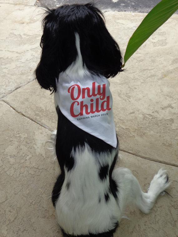 doggie-banadana-only-child-expiring1.jpg